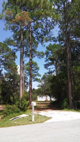 392 Cedar Creek Road Photo 1