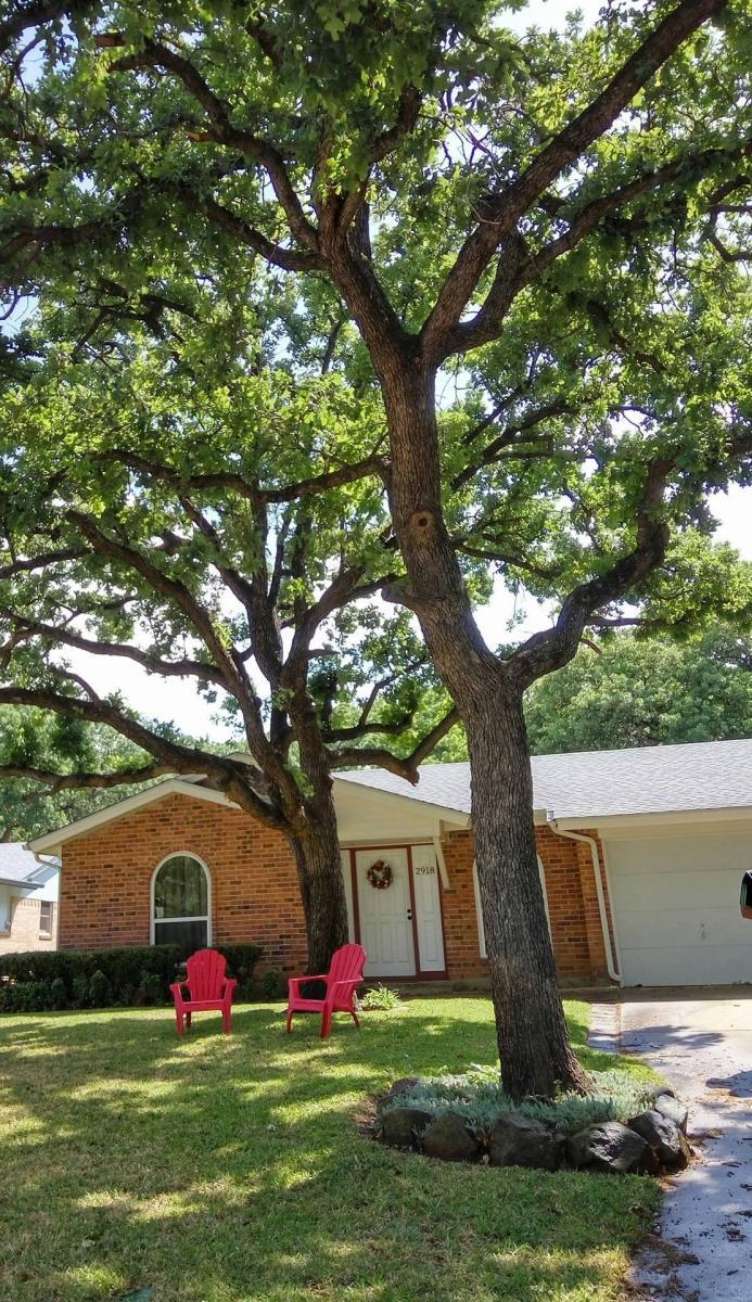 Texas tarrant county arlington 76013 - Texas Tarrant County Arlington 76013 30