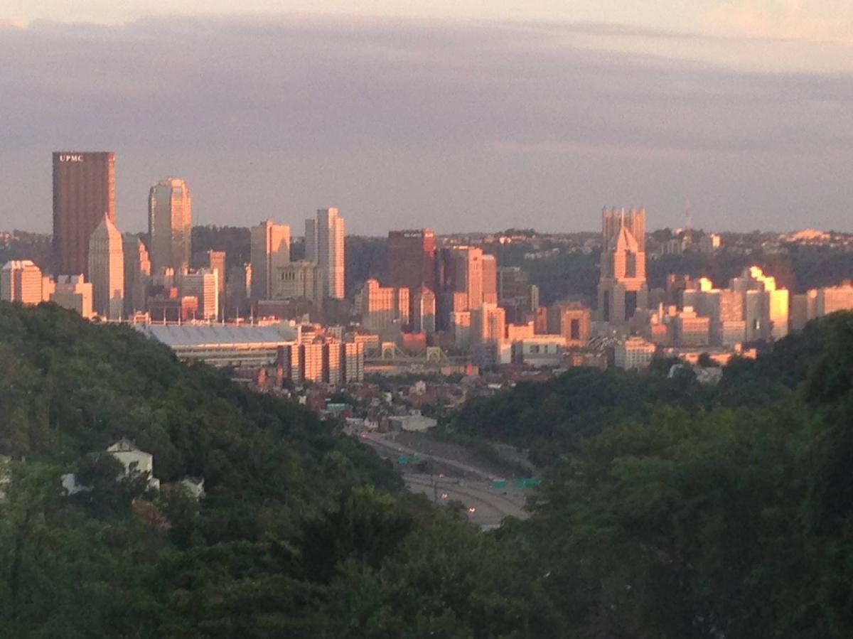 meilleur choix premier coup d'oeil sélection spéciale de 1019 Norris Street, Pittsburgh, PA 15212 | HotPads