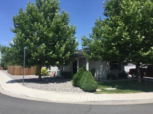 Serena Springs Drive Photo 1