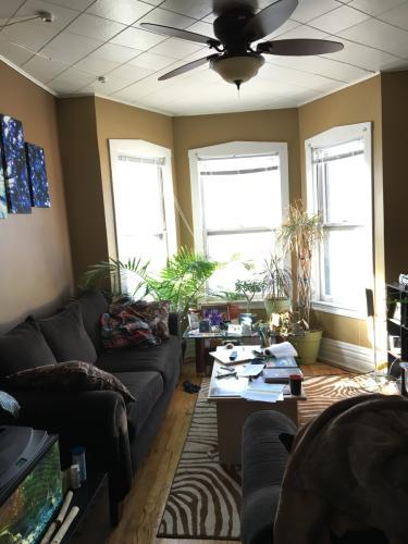 1753 N Albany Ave #2 Photo 1