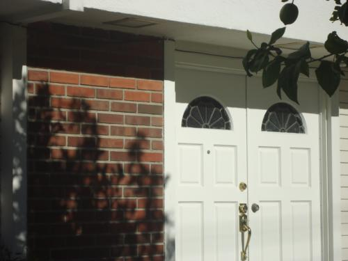 24213 Hatteras Street Photo 1