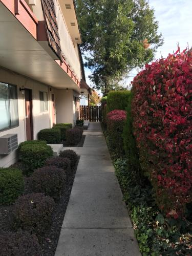 409 S 10th Avenue #1ST FLOOR Photo 1
