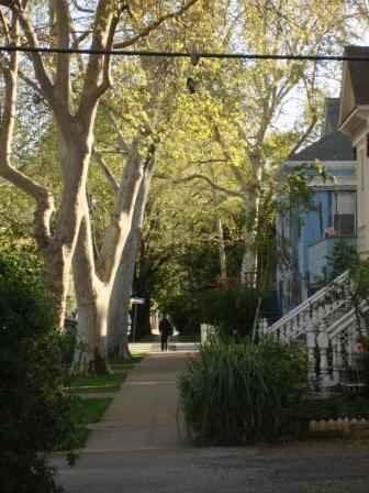 1614 17th Street #4 Photo 1