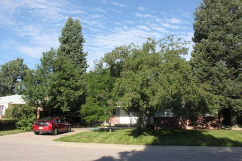2808 E Cresthill Avenue Photo 1