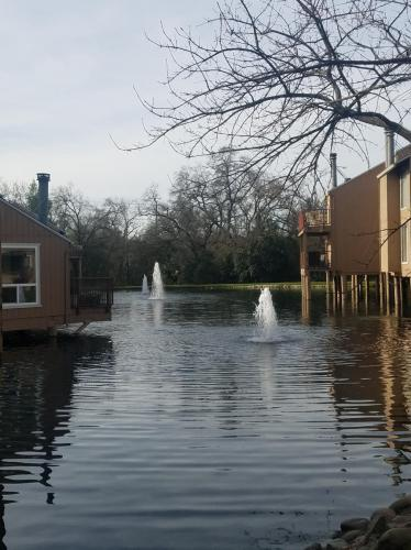 Arcade Lake Lane Photo 1