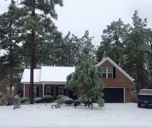 165 Spring Lake Drive Photo 1