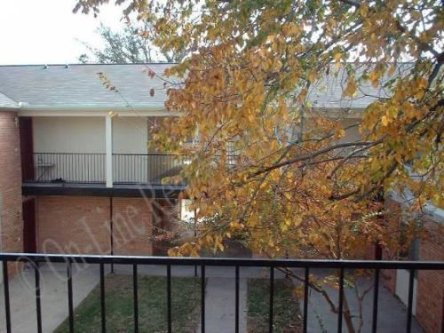 3706 Plainsman Lane Photo 1