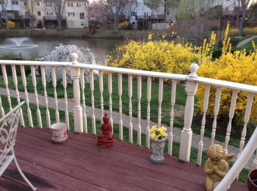 7110 Lake Cove Drive Photo 1