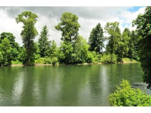 16171 S Clackamas River Drive Photo 1