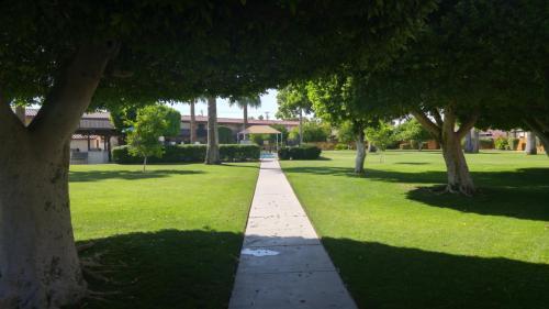 2901 S Palo Verde Lane #50 Photo 1