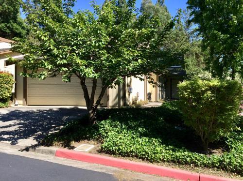 2405 Deer Tree Court Photo 1