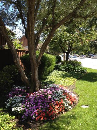 2212 Mount Shasta Drive Photo 1