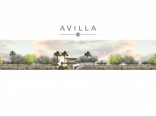 Avilla Palm Valley Photo 1