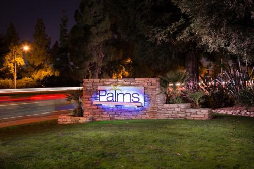 The Palms Photo 1