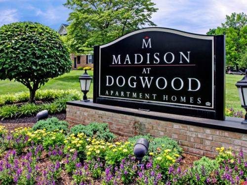 Madison Dogwood Photo 1