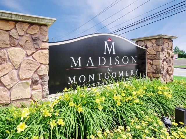 Madison Montgomery Photo 1