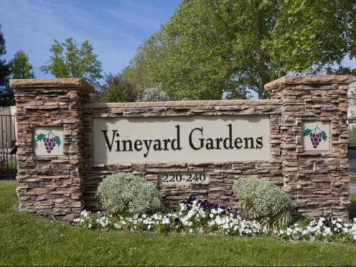 Vineyard Gardens Photo 1