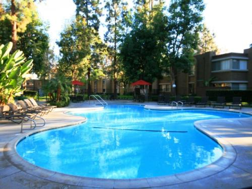 Mountain View Apartments Photo 1
