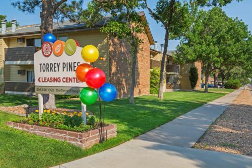 Torrey Pines Photo 1
