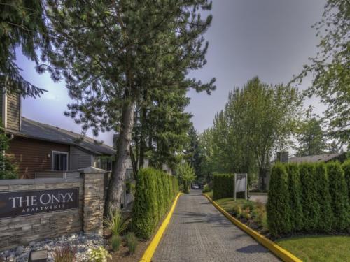 The Onyx Photo 1
