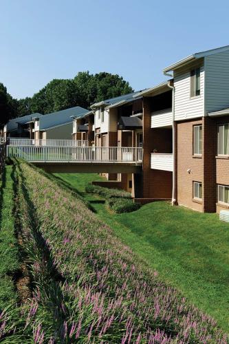Saddle Brooke Apartments Photo 1