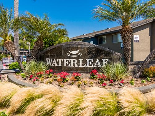 Waterleaf Apartments Photo 1