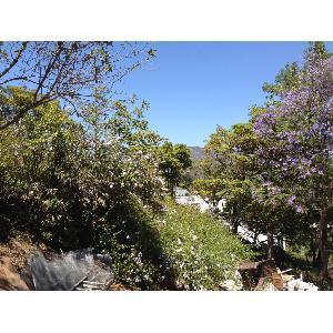 6849 Upper Cahuenga Park Trail Photo 1