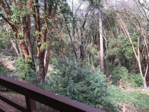 14501 Sandar Road Photo 1