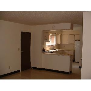 Section 8 Approved! New Management! Available N... Photo 1