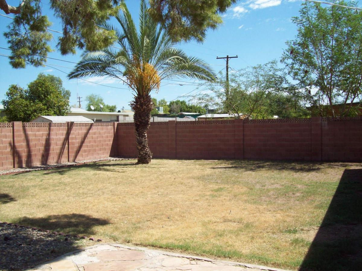 1 Bedroom Apartments In Mesa Az 3248 E Monte Vista Road Phoenix Az 85008 Hotpads