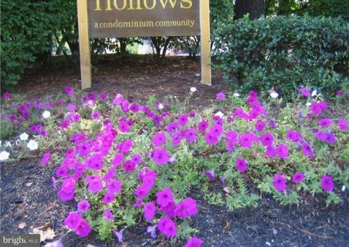 1607 Woodhollow Drive Photo 1