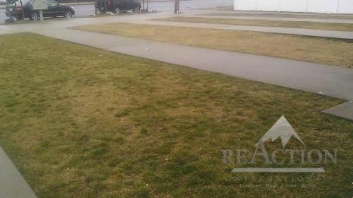 3 bed, $1,650 3 Photo 1