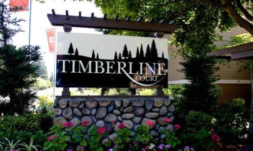 Timberline Court Photo 1