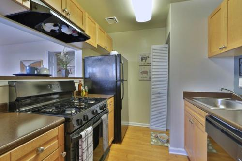 Parke Laurel Apartment Homes Photo 1