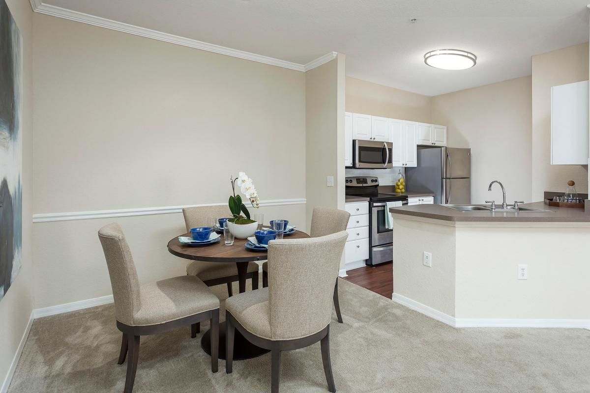 Andover Place Apartments Tampa Fl Hotpads