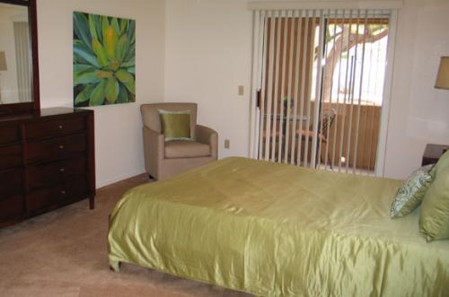 Pusch Ridge Apartments Photo 1