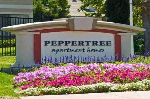300 Peppertree Way Photo 1