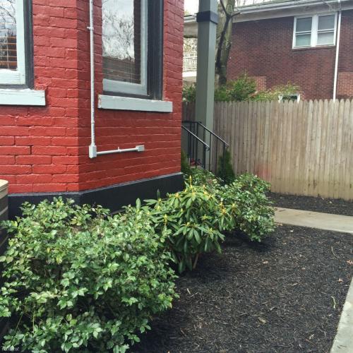 5975 Alder Street Photo 1