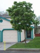 2462 Lexington Village Lane Photo 1