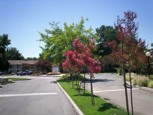 1550 Springtown Boulevard Photo 1