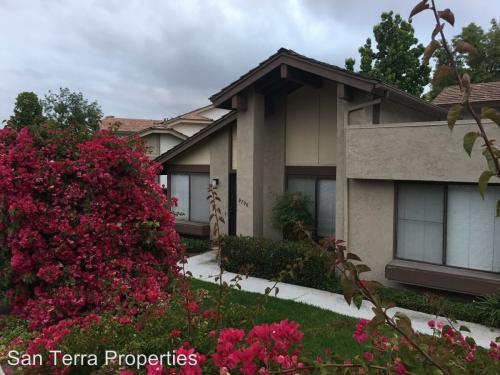 9796 Guisante Terrace Photo 1