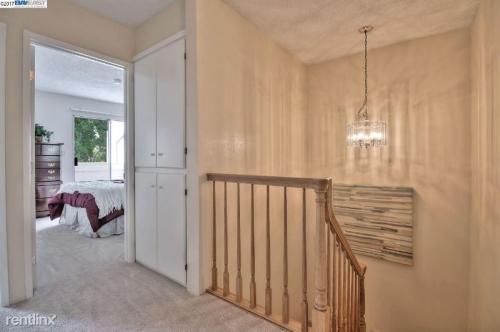 4059 Lorenzo Terrace Photo 1