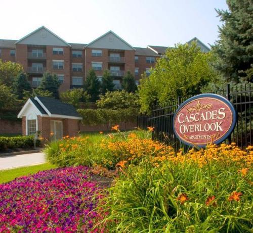 4606 Cascade Mills Drive Photo 1