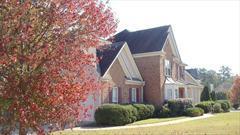 5817 Tree Fern Court Photo 1