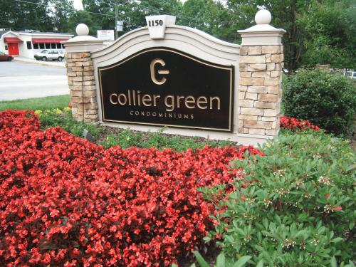 1150 Collier Green #G01 Photo 1
