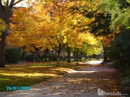 2203 E 22nd St Photo 1