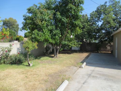 114 E Evergreen Avenue Photo 1