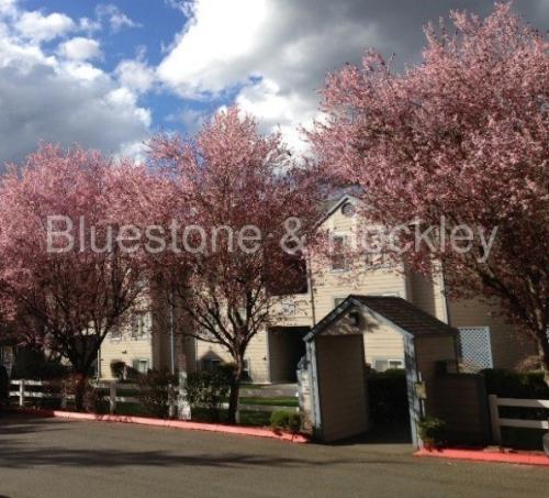 6055 SW Beaverton Hillsdale Highway Photo 1