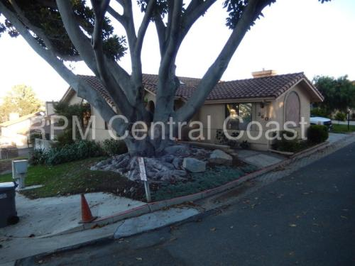260 Robles Road Photo 1